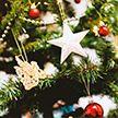 Сколько будут стоить новогодние ели на базарах в Минске?