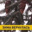 Зима вернулась в Беларусь: новые сугробы и снова минус