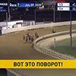 В США лидировавший в скачках жеребец ушел со стадиона за пару секунд до финиша