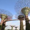 В Сингапуре открываются магазины и парки