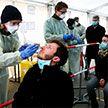 Представитель ВОЗ в Беларуси: В поголовном тестировании населения на коронавирус смысла нет