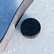 Талисман чемпионата мира по хоккею выбирают в Беларуси: проголосовали более 5 тыс. человек