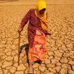 Цена глобального потепления: эксперты подсчитали убытки, связанные с изменением климата