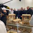 Александру Лукашенко в Смолевичском районе подарили петуха и четырёх куриц