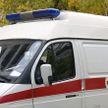 В России разъяренный медведь напал на беременную дрессировщицу