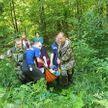 Женщина заблудилась в лесу в Витебском районе: у нее произошел инсульт