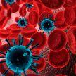 Коронавирус в Беларуси: данные на 29 апреля