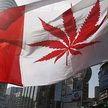 Жителю Канады выписали штраф за курение марихуаны через час после её легализации в стране