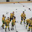 Команда «Алмаз» стала победителем турнира «Золотая шайба» в младшей возвратной группе дивизиона «Б»