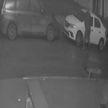 Минчанин сорвал зеркала с 17 автомобилей (ВИДЕО)