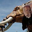 Механический слон вернулся на улицы французского Нанта