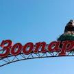 Минский зоопарк организует бесплатный вход в День влюбленных для гостей с именами Валентина и Валентин