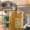 В Славгороде запустили линию по розливу мёда. Основной покупатель продукции – США