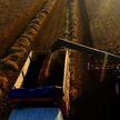 Урожай-2020: уборочная кампания перешла экватор