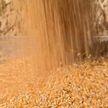 Всемирный день продовольствия отмечают 16 октября