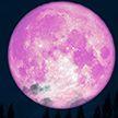 Розовая Луна 2020: жители Земли смогут наблюдать редкое явление в небе в ночь с 7 на 8 апреля