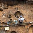 Череп мамонта с кладом внутри нашли в Подмосковье