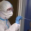 COVID-19 в мире: число случаев заражения приближается к 64 млн