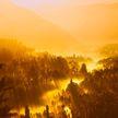 В джунглях построят новую столицу Индонезии