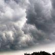 Более 500 тысяч жителей США остались без света из-за сильного ветра