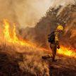 Сильный лесной пожар на северо-востоке Испании: огнём уничтожено около 2,5 тыс. га леса