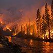 Удалось локализовать лесной пожар на юго-западе Китая