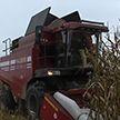 В Беларуси отмечают день работников сельского хозяйства