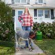 Самый маленький бык в мире живёт в США (ВИДЕО)