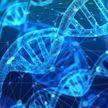 Брат подарил женщине тест ДНК, который помог раскрыть семейную тайну