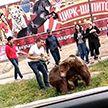 В Алматы два медвежонка подрались прямо на тротуаре (ВИДЕО)