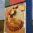 На белорусско-украинской границе неизвестные обстреляли погранзнак