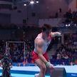 Кубок мира по спортивной гимнастике в Коттбусе: Егор Шарамков завоевал бронзовую медаль