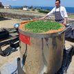 В России повар приготовил рекордные 1101 литр борща