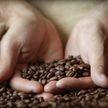 Стоимость кофе стремительно растет после аномальных заморозков в Бразилии