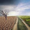 Ученые предупредили об ухудшении «жизненно важных функций» Земли