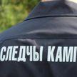 Труп мужчины обнаружили во дворе дома в Мостах