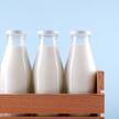 Вредно или полезно? 7 мифов о молоке, которые пора развенчать🥛