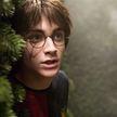 Книгу о Гарри Поттере перевели на белорусский язык