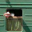 Ох, уж этот плацкартный вагон! Смешные фото из поездов
