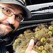 В США белка спрятала орехи под капот автомобиля