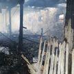 36 телят погибли на пожаре в Столинском районе