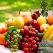 5 фруктов с низким содержанием сахара, которые можно есть, не ограничивая себя