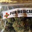 В Литве легализовали медицинскую коноплю