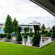 Национальный аэропорт Минск украсили новые арт-объекты