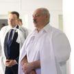 В Беларуси пока не будут вводить обязательную вакцинацию от COVID-19 – Лукашенко