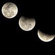 Лунный календарь на 3 апреля. Подходящий день для подготовки грядок и газонов к посадкам