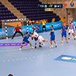 «Мешков Брест» не сыграет перенесенный матч с «Порту» в гандбольной Лиге чемпионов