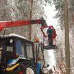 В Брестской области продолжают устранять последствия стихии