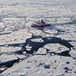 Учёные: основная причина загрязнения Арктики пластиковыми отходами – рыболовецкие суда