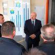 «Надо строить безопасно, но излишеств быть не должно»: Лукашенко посчитал необходимым вернуться к теме норм в строительстве